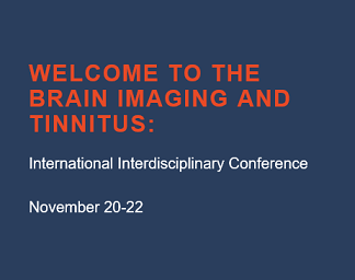 Imaging and Tinnitus 2020